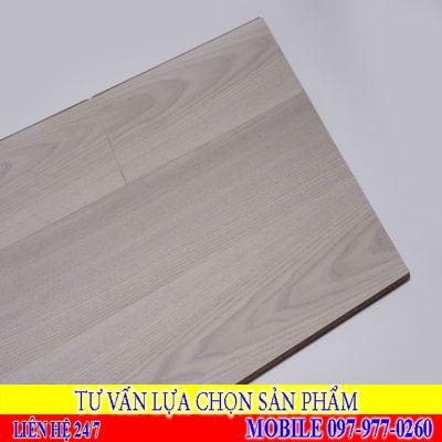 Sàn gỗ Rainforest IRAS 519