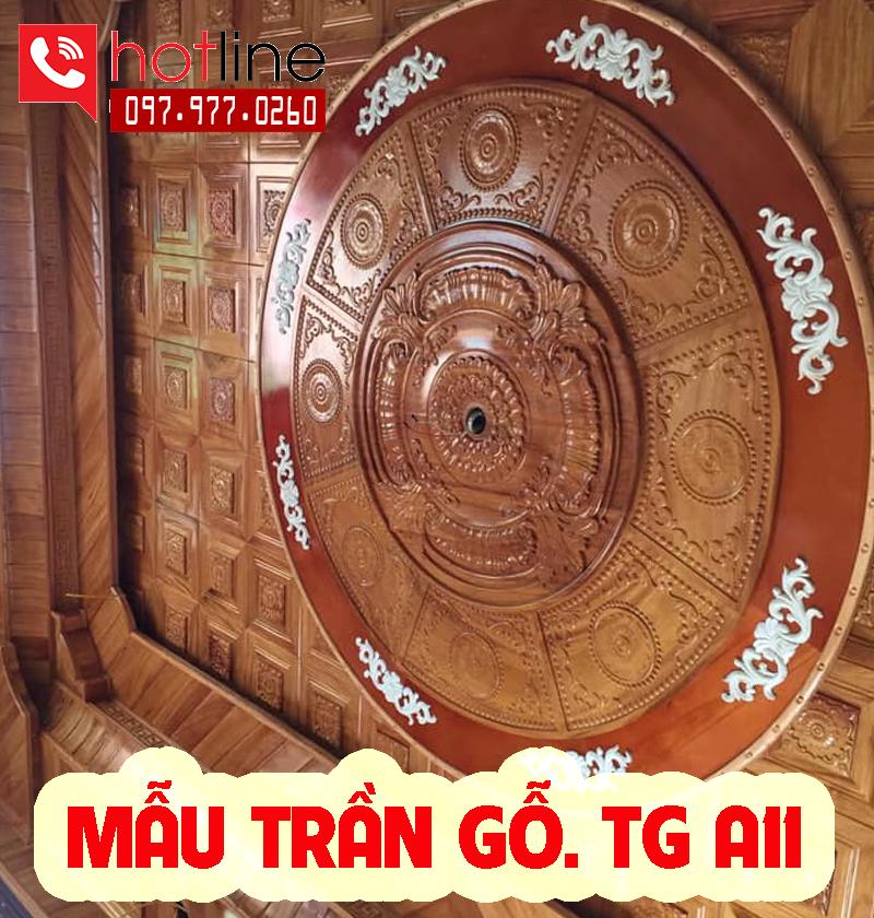 Mẫu trần gỗ TG A11