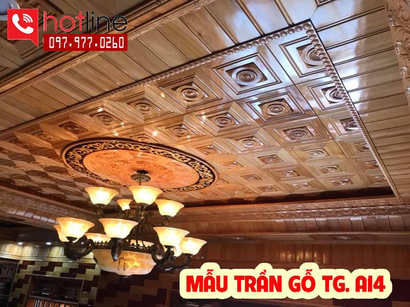 Mẫu trần gỗ TG A14